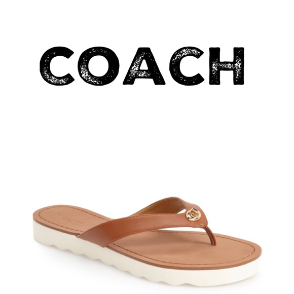 e697b67b5c40 ... free shipping coach sandals shelly matte brown buckle flip flop f74ba  84bd8 ...